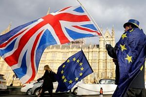 An anti-Brexit protester outside the Houses of Parliament in London on March 28. Under the terms of the so-called backstop guarantee - designed to avoid border checks on goods crossing the land frontier with Ireland - the whole United Kingdom will be