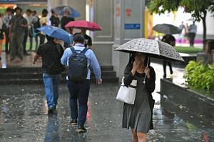 Singapore will experience wet weather and possible flash floods over the next four months because of the monsoon season, said PUB in a statement on Nov 30, 2018.