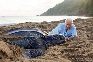 Known for countless nature films, David Attenborough has gained prominence recently with his Blue Planet II series, which highlights the devastating effects of pollution on the oceans.