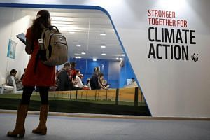 A woman watches an exhibition inside the venue of the COP24 UN Climate Change Conference 2018 in Katowice, Poland, on Dec 5, 2018.