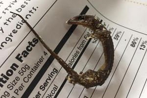 Ms Jane Holloway, 38, who lives in Bangkok, wrote a Facebook post last Saturday (Dec 29) about finding a dead lizard in her half-eaten packet of salted egg fish skin.