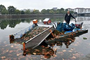 A worker uses a machine to scoop dead leaves and garbage from an artificial lake in the Xixi River in Wuyi, Zhejiang, on Dec 6, 2018.