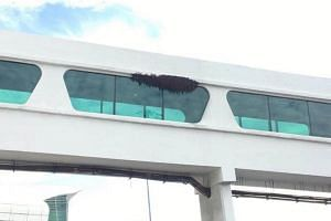 AirAsia boss Tony Fernandes posted a picture which shows what appears be a swarm of bees nesting on the facade of the KLIA2 building.