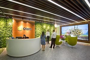 Olam, which owns two sugar mills in India and crushes more than 1 million tonnes of sugarcane, is the latest sugar trading company to have scaled back or sold businesses.