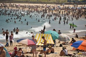 For the four-fifths of Australia's 25 million people who live on the coast, the summer typically means lazing on the beach and watching cricket.