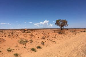 A number of businesses promoting their small towns as remote tourist destinations in the north-eastern state of Queensland complain of cases where a typical six-hour drive has been estimated by Google Maps to take up to 11 hours.