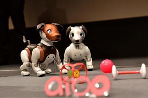 Versions of Sony's puppy-sized robot dog aibo, including a 2019 limited special colour model (left), are displayed during a press conference at the company's headquarters in Tokyo on Jan 23, 2019.