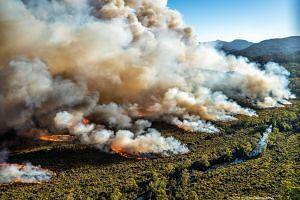 A large bushfire burns in Tasmania, Australia. Month-long bushfires have ravaged almost 200,000 hectares of land in Tasmania.