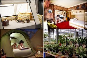 (Clockwise from top left:) A family deluxe room where children can sleep in a tent at Shangri-La Hotel; a pirate-themed room at the Furama Riverfront, Singapore; plants at Gardenasia's nursery; a glamping experience for children at The Ritz-Carlton,
