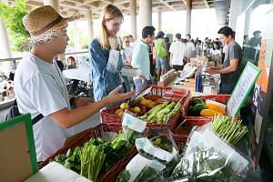 Locally grown organic produce on sale at an event at the Marina Barrage last year. Environment and Water Resources Minister Masagos Zulkifli unveiled the ambitious target of locally producing almost one-third of the food that Singapore needs by 2030.