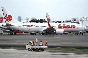 A Lion Air Boeing 737 Max 8 aircraft at Soekarno-Hatta International Airport in Indonesia on Tuesday. China and Indonesia were the first countries to order local carriers to ground their Boeing 737 Max 8 aircraft, after the plane was involved in two