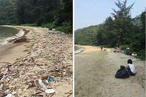 Social media users responding to the #trashtag challenge posted pictures of themselves or others picking up litter in places such as beaches, parks and schools.
