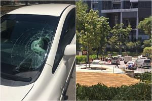 An 82-year-old female pedestrian died after an accident with a car at a roundabout in Marine Parade on March 18, 2019.