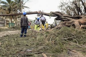 Public workers cut a fallen tree after Cyclone Idai hit in Beira City, Mozambique, on March 20, 2019.