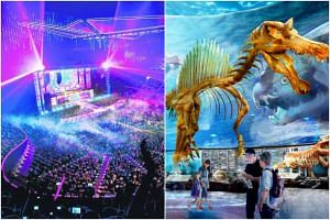 Marina Bay Sands hopes to draw A-list artistes to its new entertainment space (left), while a new Singapore Oceanarium three times larger than the existing S.E.A. Aquarium at Resorts World Sentosa is being planned.