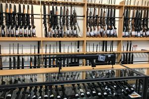 The new legislation bars the circulation and use of most semi-automatic firearms, parts that convert firearms into semi-automatic firearms, magazines over a certain capacity, and some shotguns.