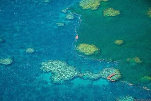 Sediment-filled water is seen in Australia's iconic Great Barrier Reef in February. The reef will collapse and die if the planet warms by another half a deg C and unless radical climate action is taken, according to a private report prepared by the G