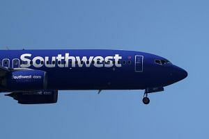 Southwest has the largest Max fleet, with 34 planes and additional orders for more than 200.
