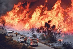 Firefighters attacking the Thomas Fire's north flank with backfires while battling a massive wildfire north of Los Angeles in 2017. California has experienced years of record-breaking drought.