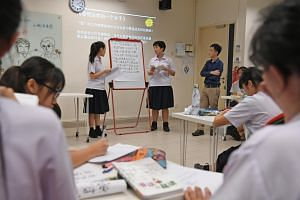 A two-year programme that weaves in creative ways of learning Chinese, Malay or Tamil literature through immersion trips and camps will be offered in 15 secondary schools from next year.