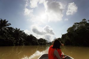 The Sunday Times sets off from a jetty in Kampung Sungai Telor, Kota Tinggi, and travels 8km downstream to Singapore PUB's Johor River Waterworks.