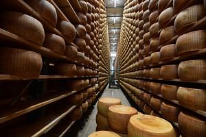 Parmesan cheeses stored at a facility in Motteggiana, Italy, on April 5, 2019.
