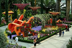 The Dragon Playground spans 20m from head to tail, stands at 4m tall, and is decorated with orchid blooms, resembling a tunnel of orchids.