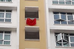 The National Emblems (Control of Display) Act states that displaying any flag or national emblem that is not that of Singapore in public is considered an offence.