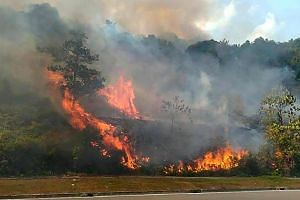 Some 16ha of forest at Kampung Pekajang started burning last Friday afternoon (Aug 23) due to the current dry weather in the state.
