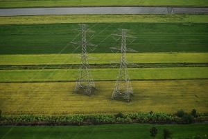 An aerial view of agricultural areas with rice paddies and electricity pylons in the Thai province of Chachoengsao, on Aug 6, 2019.