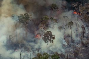 Smoke billows from forest fires in the municipality of Candeias do Jamari, close to Porto Velho in Rondonia State, in the Amazon basin in north-western Brazil, on Aug 24, 2019.
