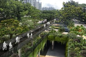 An artist's impression of the Bukit Timah-Rochor Green Corridor, which will run parallel to the Bukit Timah Canal and give cyclists and pedestrians a continuous path between Jurong Lake Gardens, the Singapore Botanic Gardens and Gardens by the Bay.