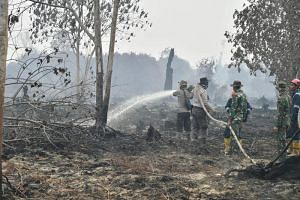 Firefighters douse peat fires in Pekanbaru on Sept 17, 2019.