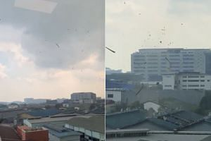 The National Environment Agency's Meteorological Service Singapore said the rotating column of wind was caused by the development of an intense thunderstorm under unstable atmospheric conditions.