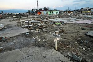 The force of the quake's impact saw entire neighbourhoods levelled by liquefaction - a process where the ground starts behaving like a liquid and swallows up the earth like quicksand.