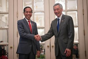 Indonesian President Joko Widodo calls on Prime Minister Lee Hsien Loong ahead of the Singapore-Indonesia Leaders' Retreat at the Istana on Oct 8, 2019.