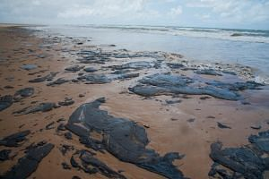 A handout picture released by the Sergipe State Environment Administration (Ademas) on Sept 25, 2019, showing oil spilled on a beach in Pirambu, Sergipe state, Brazil.