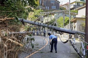 In a file picture taken on Sept 9, 2019, a police officer is seen inspecting a utility pole that was downed by Typhoon Faxai in Kamakura, Japan.