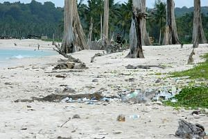 This 2018 picture shows plastic litter on India's Great Nicobar island in the Bay of Bengal. A 2014 survey found more than 88 per cent of the plastic litter had originated in four countries: Malaysia, Indonesia, Thailand and Singapore.