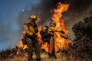 Firefighters burn brush ahead of the Kincade Fire in an effort to reduce fuel and increase containmen,
