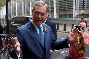 Nigel Farage is considered a polarising figure who might push away the Conservatives' more moderate supporters.