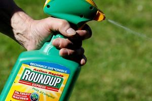 A man uses Monsanto's Roundup weedkiller spray containing glyphosate in a garden in Bordeaux, France, on June 1, 2019.