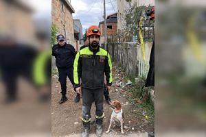 Luca Martino and his rescue dog, Foglia, in Durres, Albania on Nov 28, 2019.