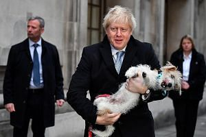 """British Prime Minister Boris Johnson with his dog Dilyn after casting his ballot at a polling station in London on Thursday. Britain is about to find out that it takes more than a vote at an election to """"get Brexit done"""", says the writer. REUTERS"""