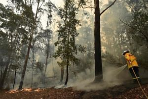 A firefighter tackles a bush fire south of Nowra in Australia on Jan 5, 2020.
