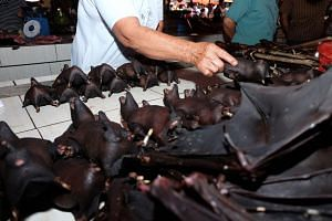 A photo taken on Feb 8, 2020, shows a vendor selling bats at the Tomohon Extreme Meat market on Sulawesi island.