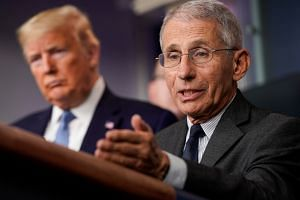 US National Institute of Allergy and Infectious Diseases director  Anthony Fauci.