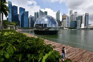 Entirely surrounded by water, Apple Marina Bay Sands offers uninterrupted 360-degree panoramic views of the city and its spectacular skyline. The sphere is a first-of-its-kind, all-glass dome structure that is fully self-supported, comprising 114 pie