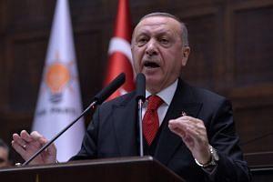 Turkey will strike Syrian forces if Turkish soldiers are hurt: Erdogan