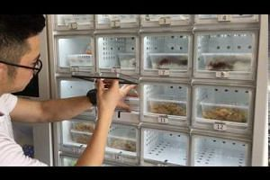 Hawker food from Fastbee.sg's vending machine
